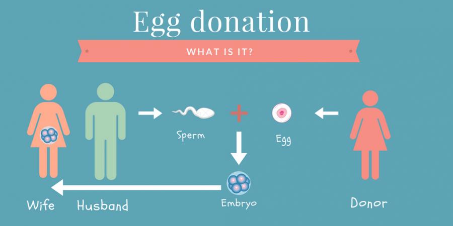 Hoe werkt embryodonatie
